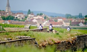 Cyclists In The Distance In Burgundy