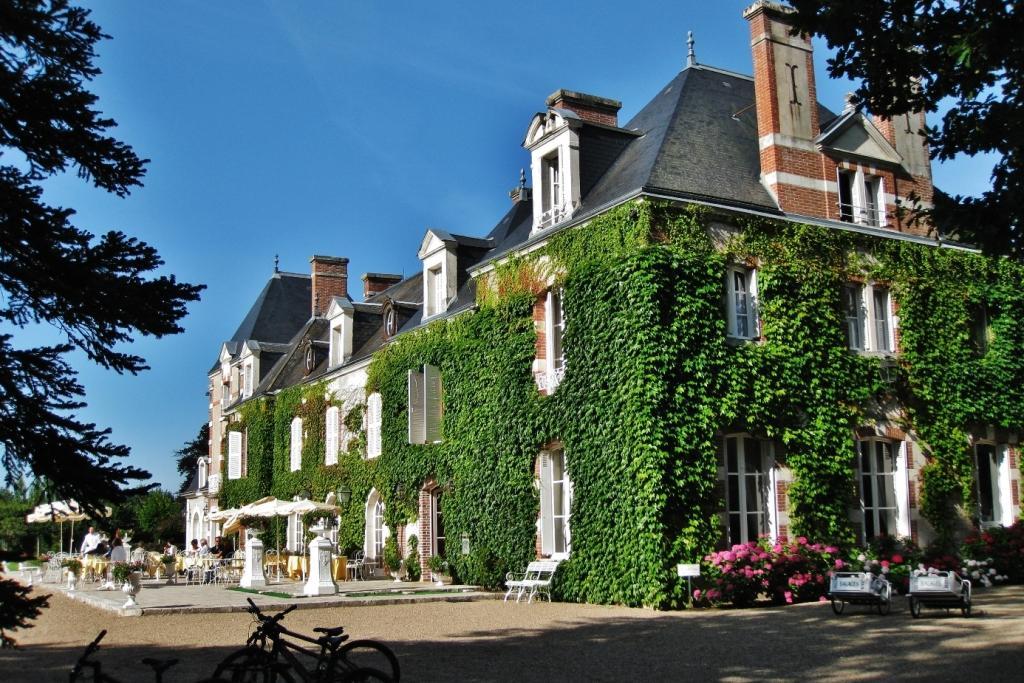 Domaine Des Hauts De Loire Vines