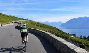 Riding In The Swiss Vineyards Along Lake Geneva