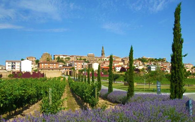 Rioja And Ribera Del Duero Bike Tour