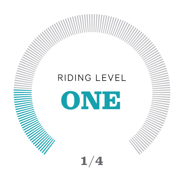 Riding Level Icons_v2-01