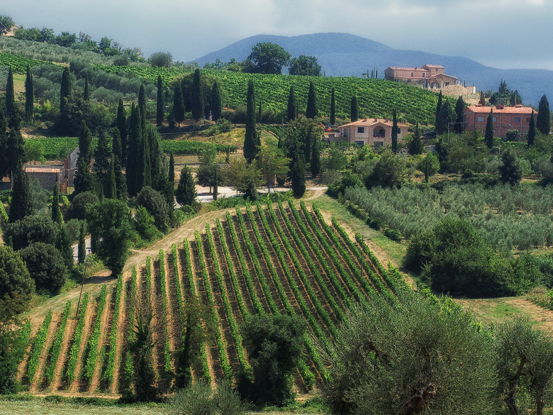 Montalcino landscape-flickr_FOR WEB