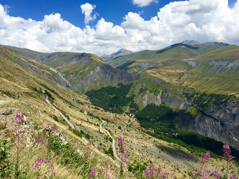 Col d'Sarenne in the Alps, with wildflowers in the foreground
