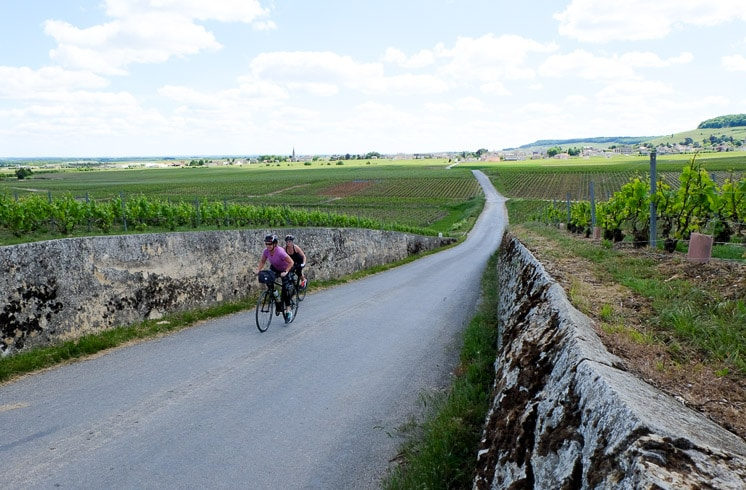 Two DuVine cyclists riding up a small hill on a vineyard road in Champagne, France