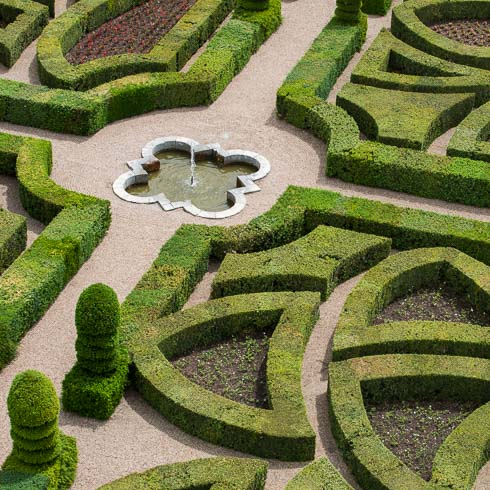 A hedge maze in the gardens of Château de Villandry in Villandry, France