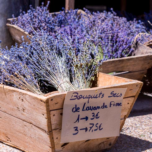 A fresh lavender bouquet for sale at a French market in Provence