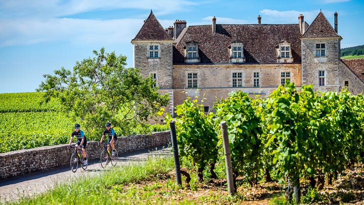 Two cyclists on a vineyard road at Clos de Vougeot in Burgundy