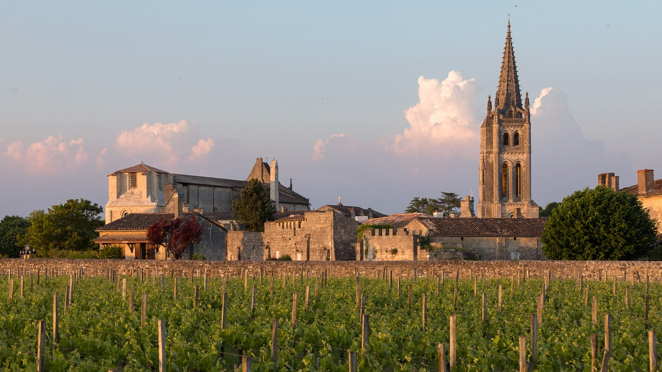 Sunset landscape over vineyards at winery in Bordeaux