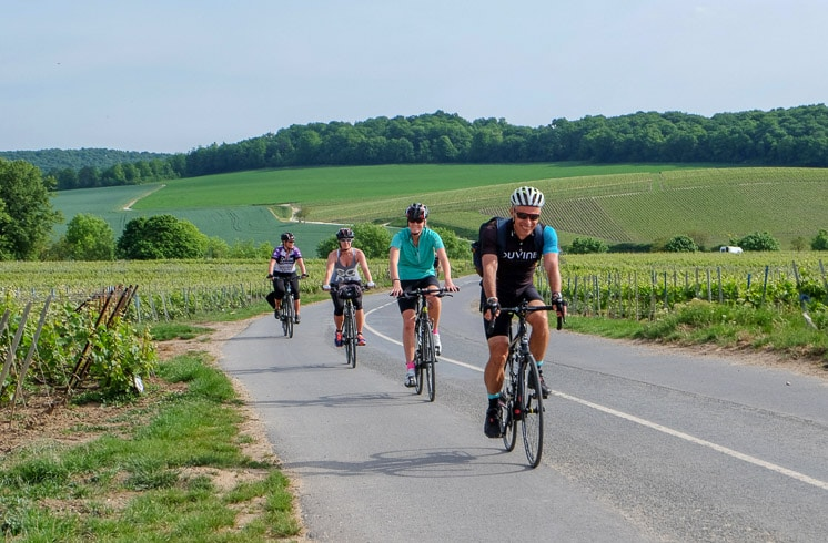 Four DuVine cyclists in single file on a road surrounded by Champagne vineyards
